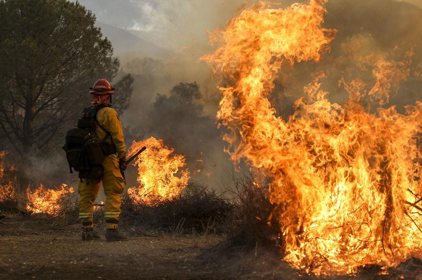 Vereadores aprovam, em 2ª e última votação, projeto que cria brigada de incêndio em Guaraí