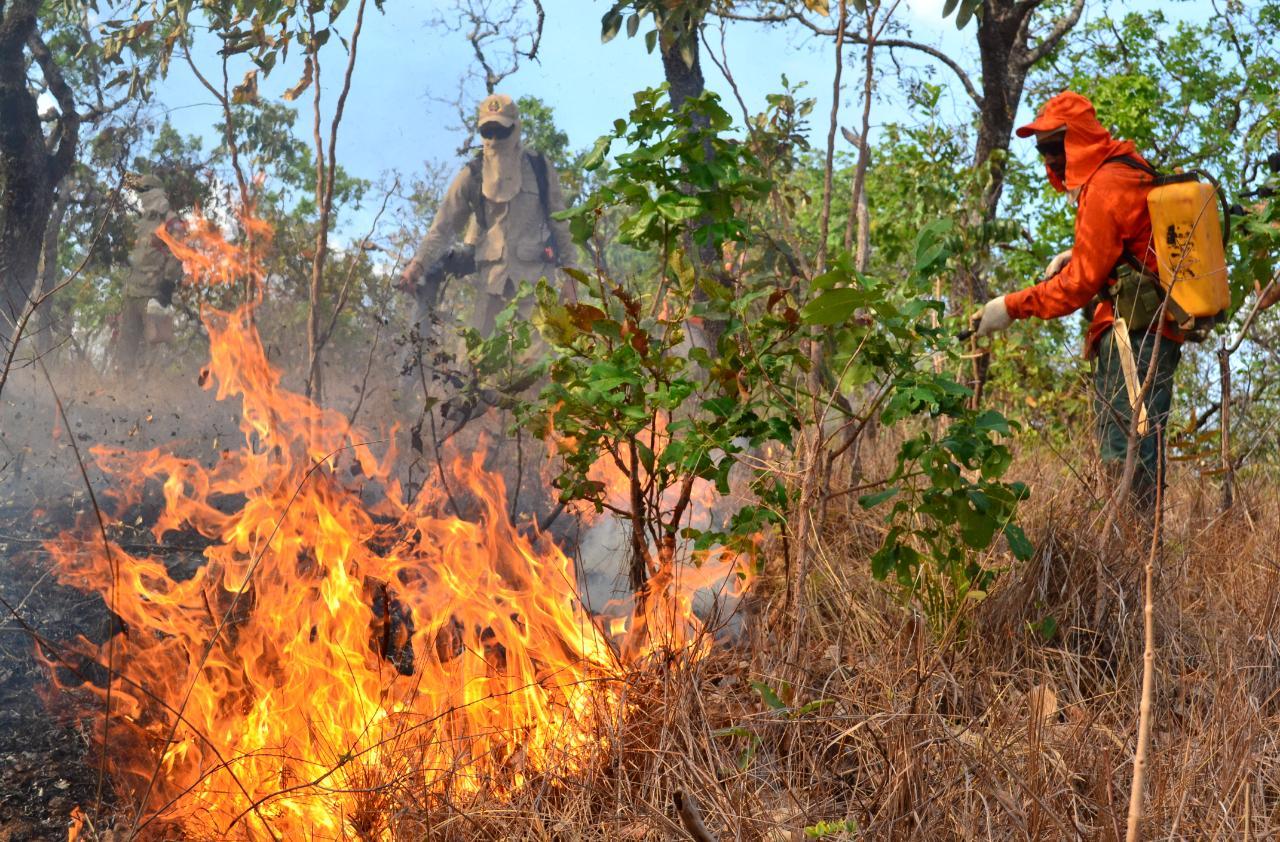 Projeto que autoriza criação de brigada de incêndio em Guaraí aguarda votação na Câmara