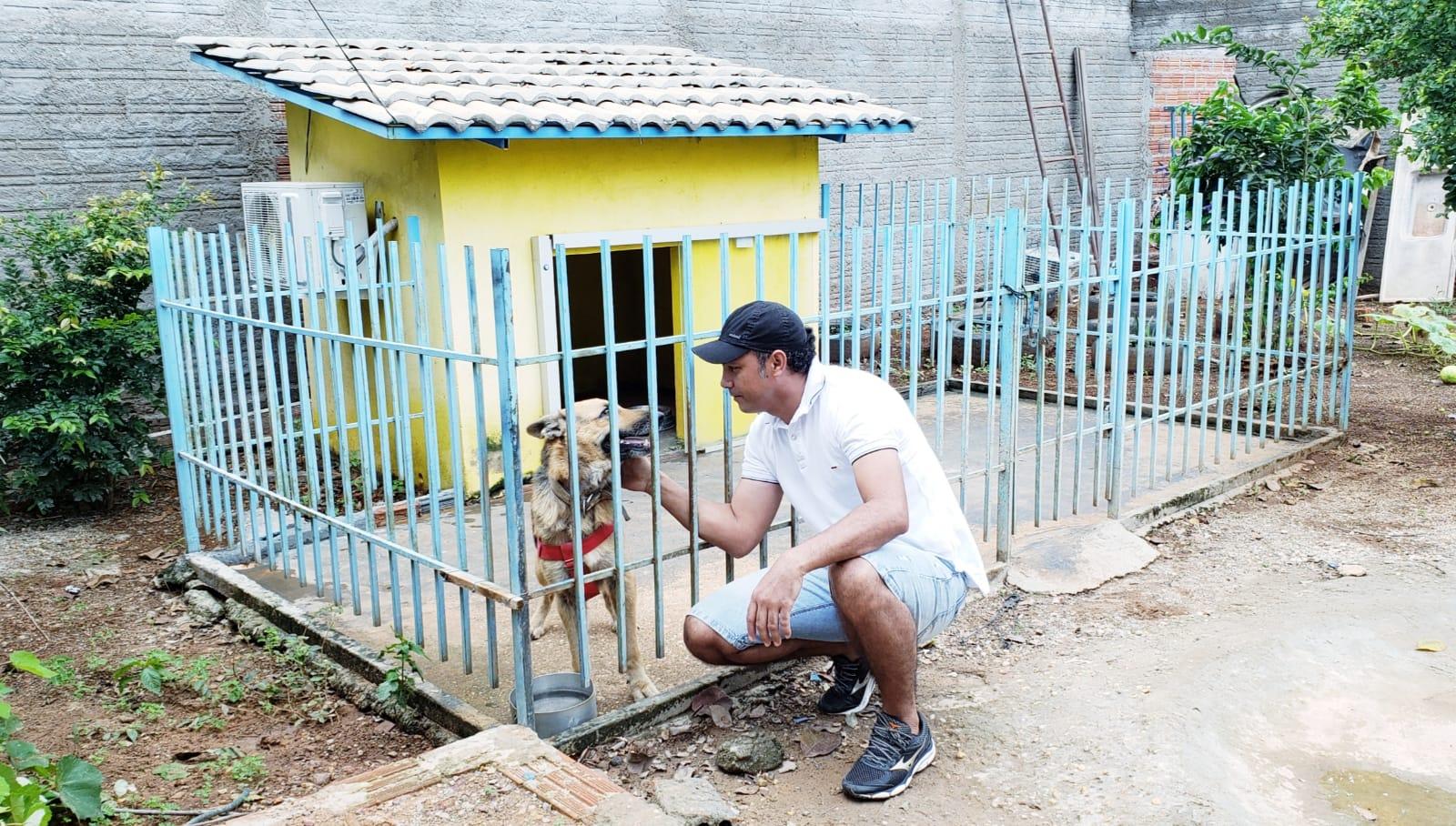 Cadela Hana, famosa por ter casinha com ar-condicionado, morre vítima de calazar em Guaraí