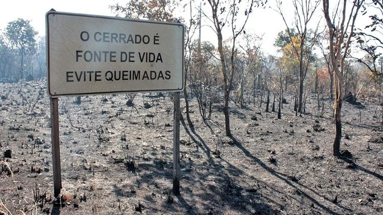 Tocantins registra 3,8 mil focos de queimadas, 22,4% menos que no mesmo período de 2019