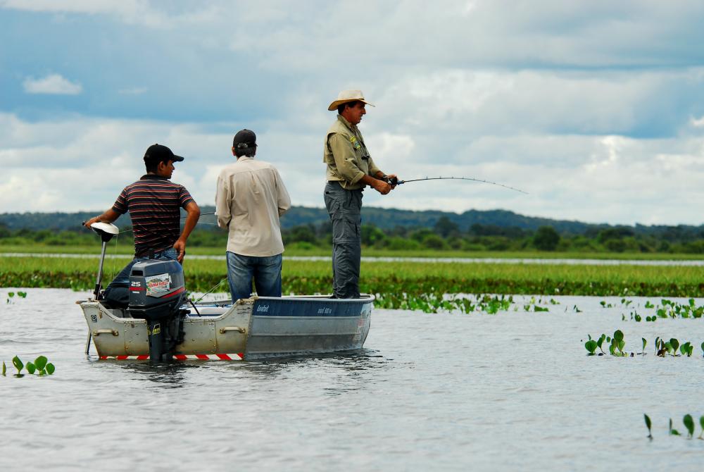 Piracema no Tocantins inicia em 1º de novembro de 2020 e segue até 28 de fevereiro de 2021