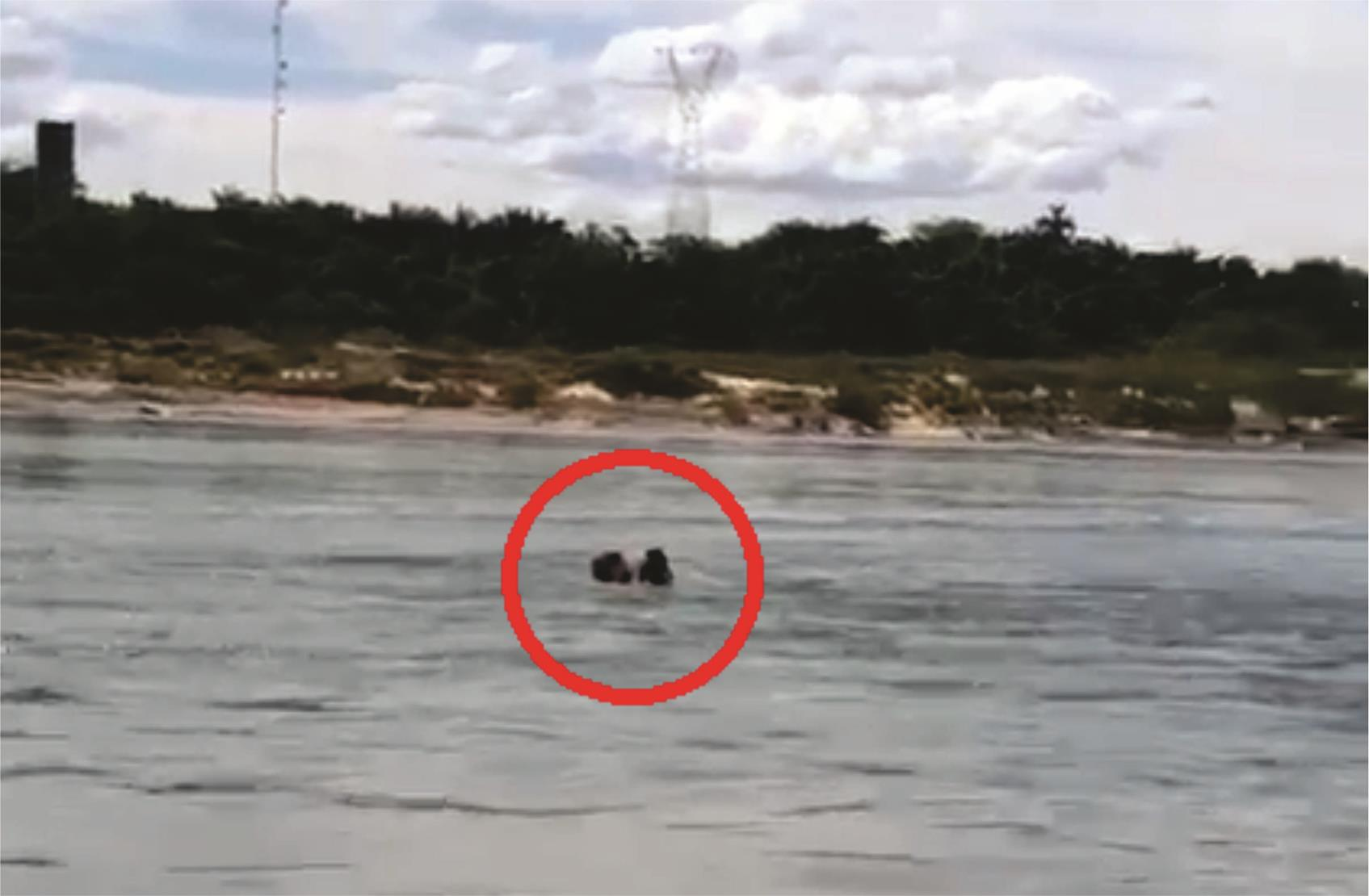 Vídeo mostra resgate de crianças guaraienses no Rio Tocantins; por pouco eles não se afogaram